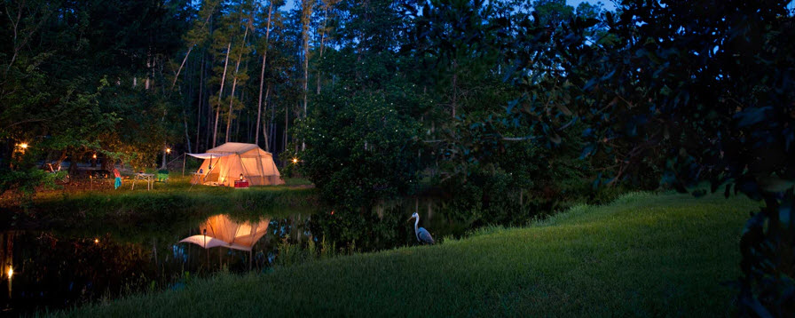 Campsites at Fort Wilderness | Big Beautiful World Travel | Disney Travel Agent Cathi Maziarz